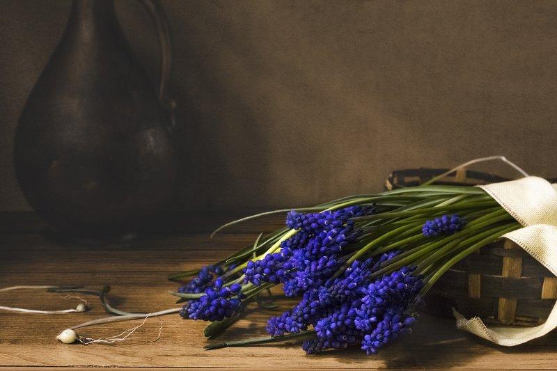 цветы, мускари, корзинка, кувшин, натюрморт, синий С мускариphoto preview