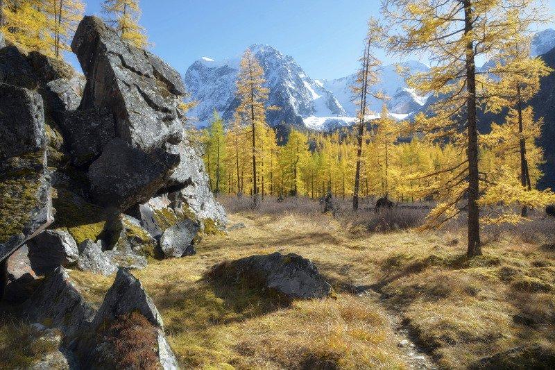 алтай,горы янтарный вечерphoto preview