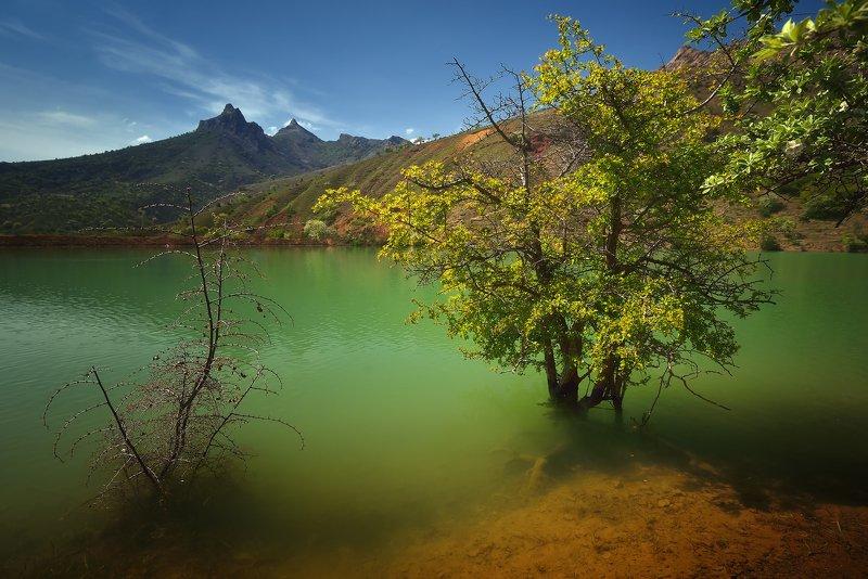 крым, природа, весна, горы, цветы, вода, озеро Озеро Панагияphoto preview
