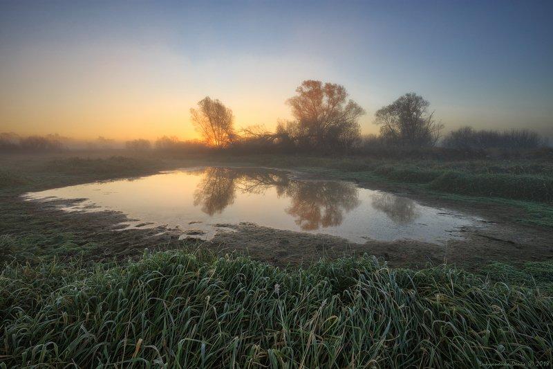 2018, россия, пейзаж, утро, осень, туман, трава, озеро, рассвет, иней, отражение, солнце, деревья Засуха...photo preview