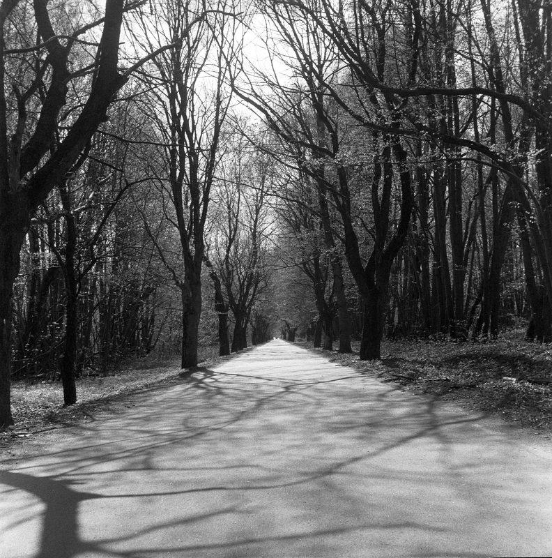 Калининградская дорогаphoto preview