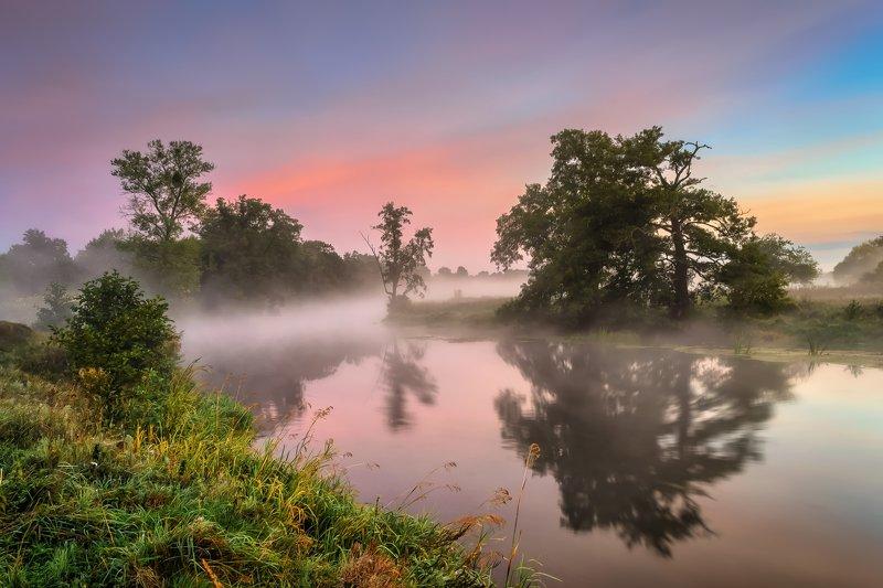 sunrise, river, gwda, fog, nikon, nature, clouds, trees, mirror, nostalgia, atmosphere, mist, dawn, the last day of summer,  Nostalgiaphoto preview