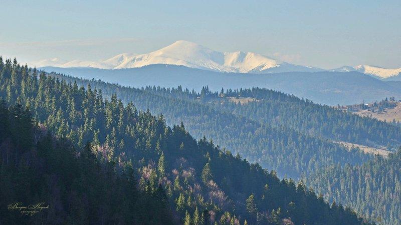 весна, апрель, снег, горы, карпаты, говерла Говерла в апрельском снегуphoto preview