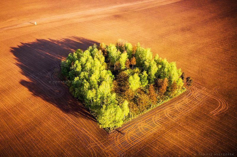 poland, polish, field, spring, awesome, amazing, adventure, colours, landscape, drone, sunrise, sunset, light, outdoor, travel Spring cleaningphoto preview