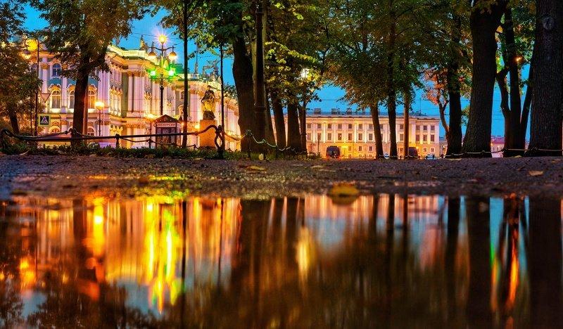 город, вечер, парк, отражение, деревья, лужи, дворцовая площадь photo preview
