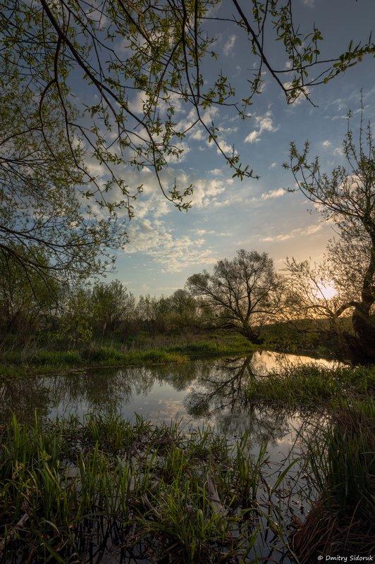 Рассветные сказки весныphoto preview