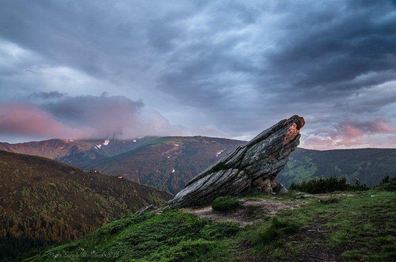 пейзаж, карпаты, утро, лето, горы, черногорский хребет, украина Каменная птицаphoto preview