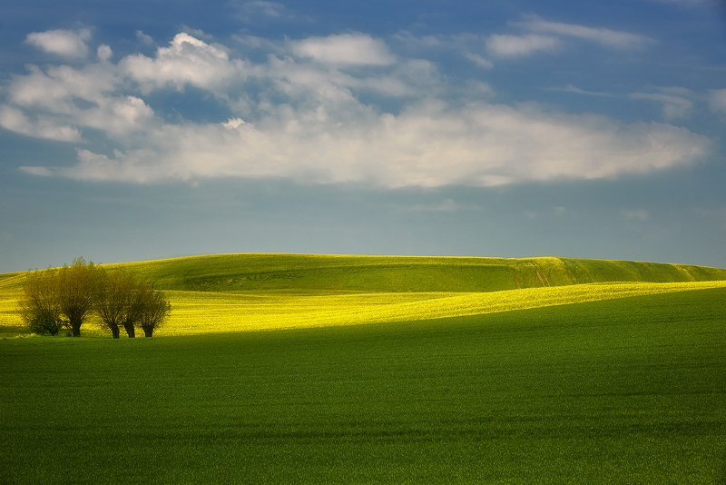landscape, spring, green, meadow, sky, village, idyll, agriculture Time of rapephoto preview