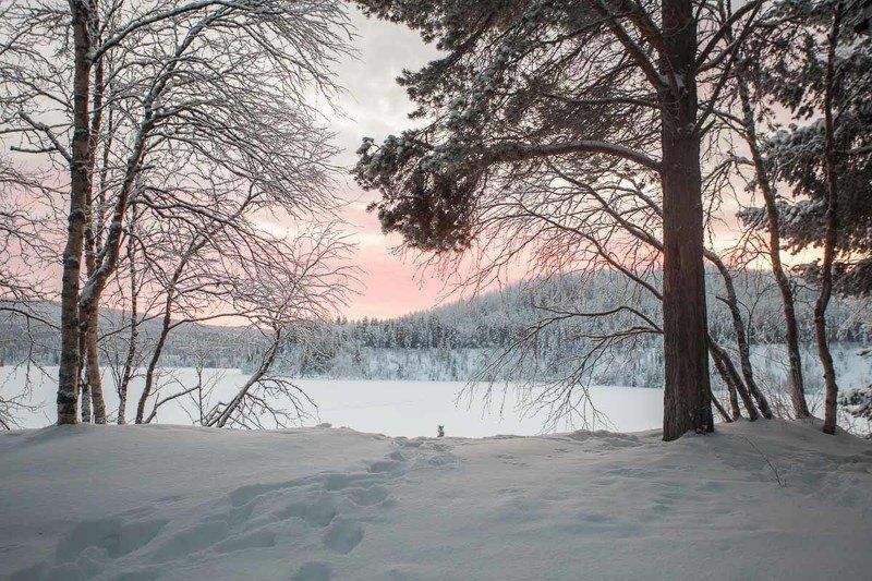 зима, Мурманская область, небо, рассвет, река, снег, лес, природа, красота Заполярный рассветphoto preview