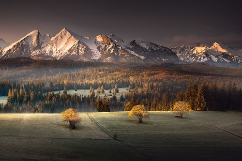 Tatras Morning