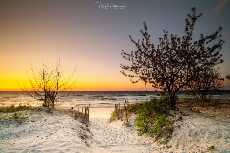 sea, sunset, landscape, nature, travel, beach, trees Sunset on the Baltic Seaphoto preview