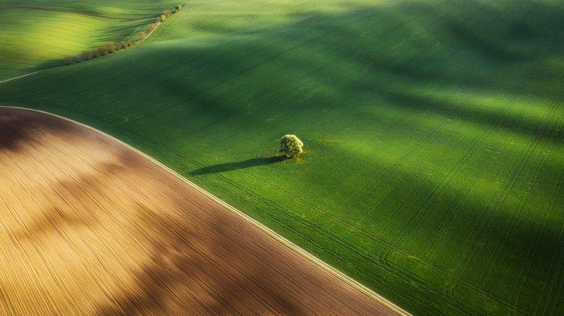 моравия, пейзаж, закат, абстракция Моравская абстракцияphoto preview