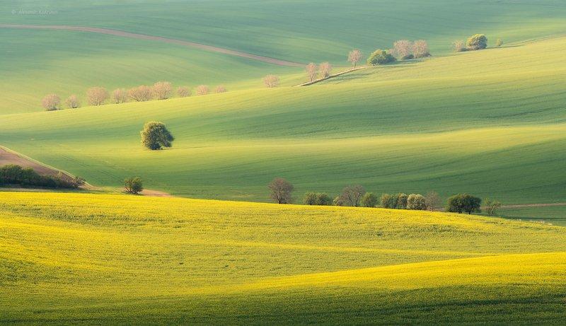 моравия, рассвет, пейзаж ВесеннеМоравское..... фото превью