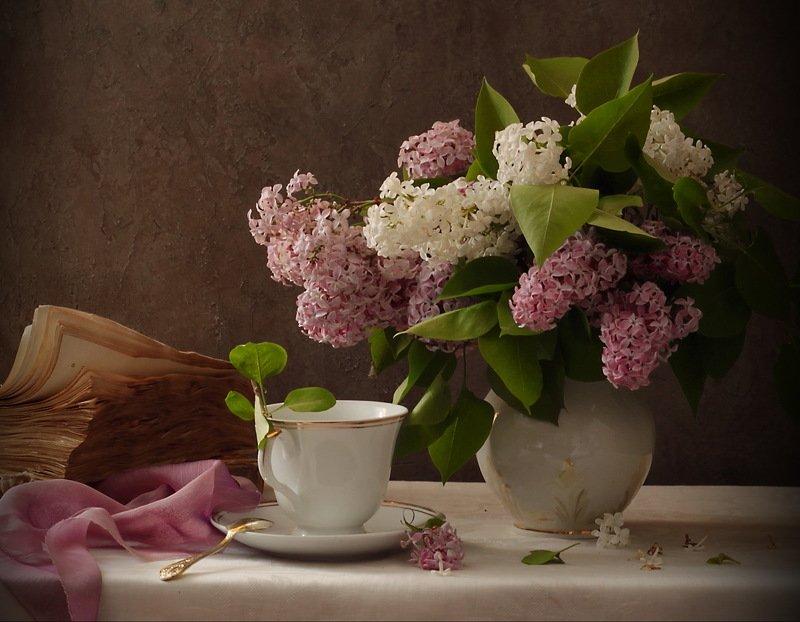 натюрморт, сирень, чашка, книга, цветы сирень душа моя...photo preview