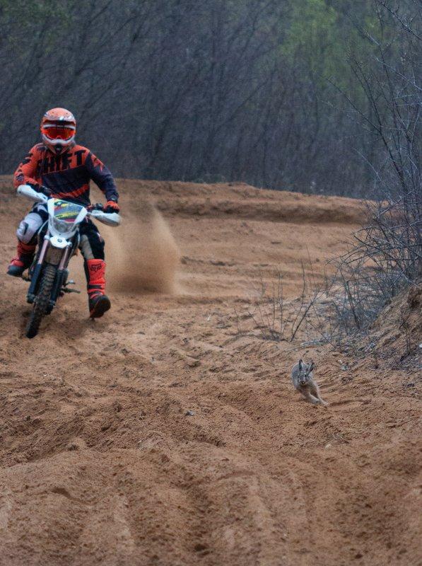 Кто быстрее?photo preview