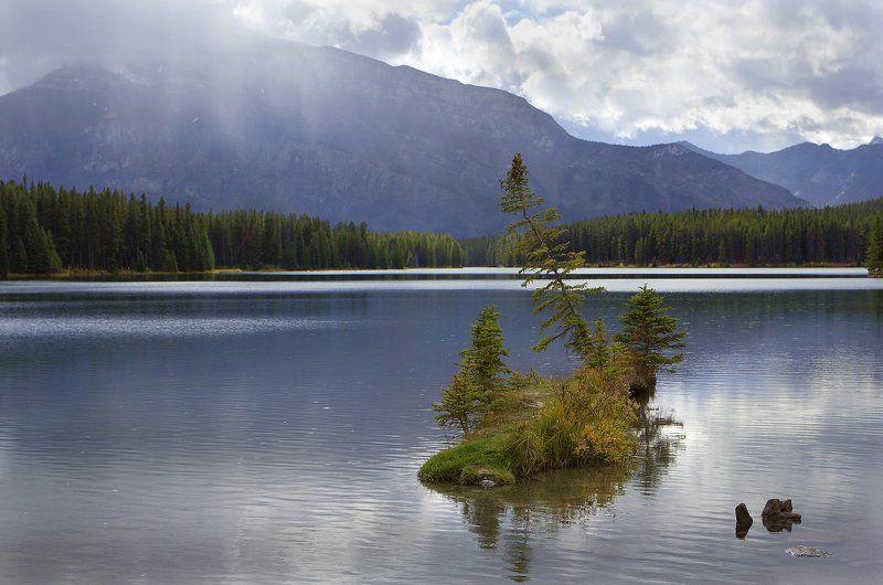 канада, озеро, ель, остров ***photo preview