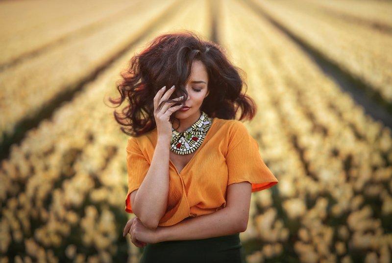 волосы.девушка,поля тюльпанов,тюльпаны,желтые тюльпаны,желтые цветы,портрет,женщина,цветы,нидерланды,поле,закат Ветер в волосахphoto preview