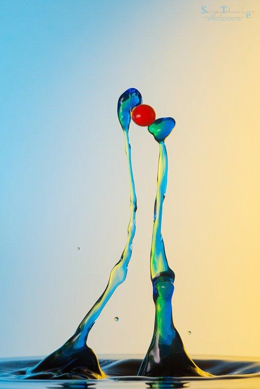 вода, капли, жидкость, макро, арт, liquid, liquidart, splash, drop, сергейтолмачев, sergeytolmachev Он и Онаphoto preview