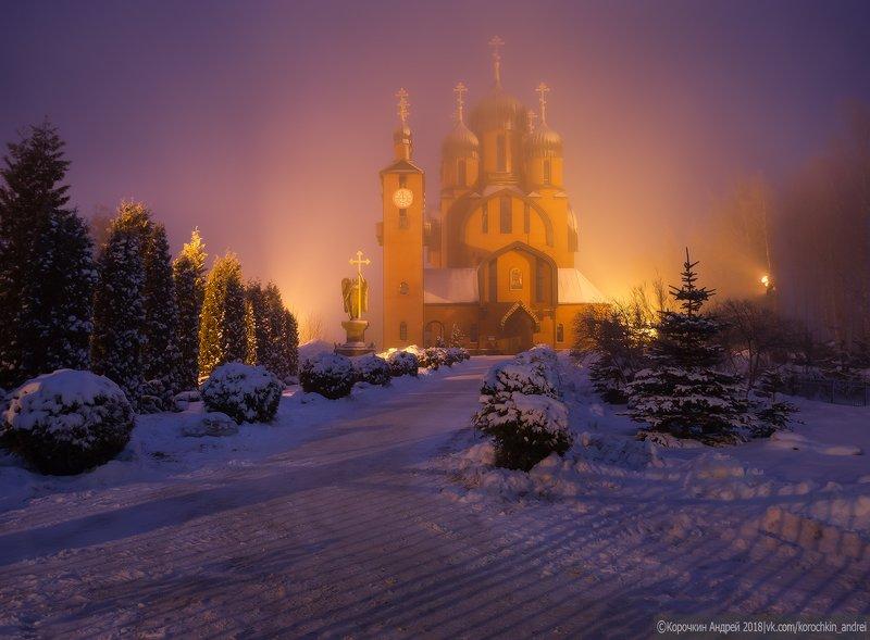 В зимнем тумане...photo preview