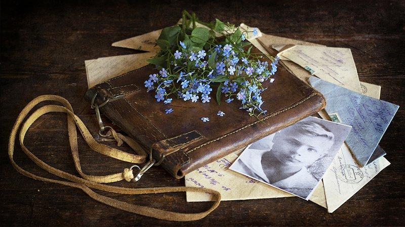 фронтовой планшет, письма, фото, незабудки Незабудки для Лёнькиphoto preview