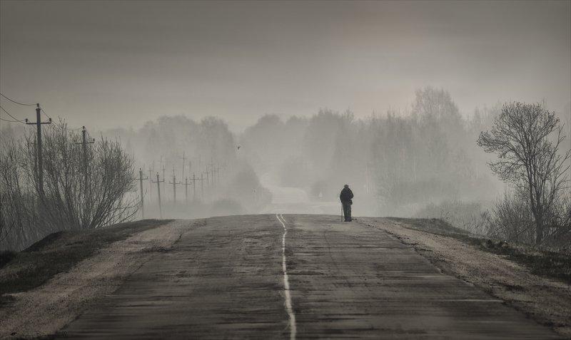 пал_травы, смоленщина, весна,  дорога, бродяга Пилигрим.photo preview