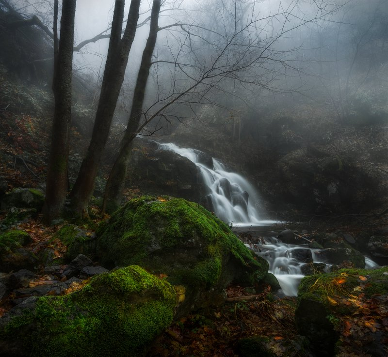 landscape nature scenery forest wood autumn river waterfall longexposure mountain vitosha bulgaria лес oсень Irreversibly running timephoto preview