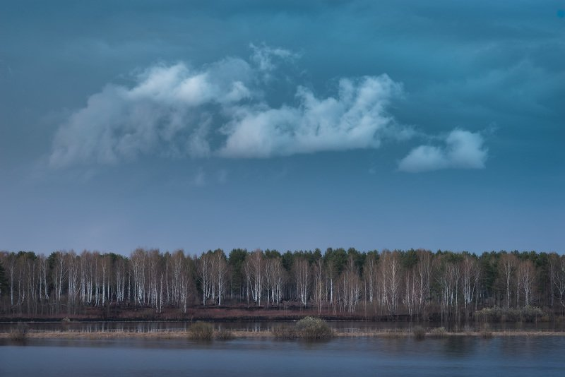 Неказистая природа севера веснойphoto preview