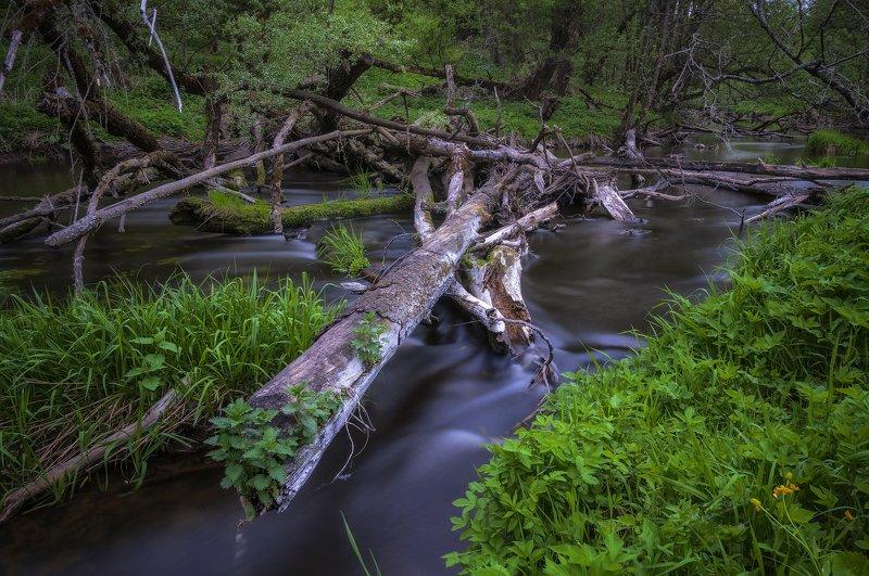 река,весна,подмосковье,природа,лес,пейзаж ***photo preview