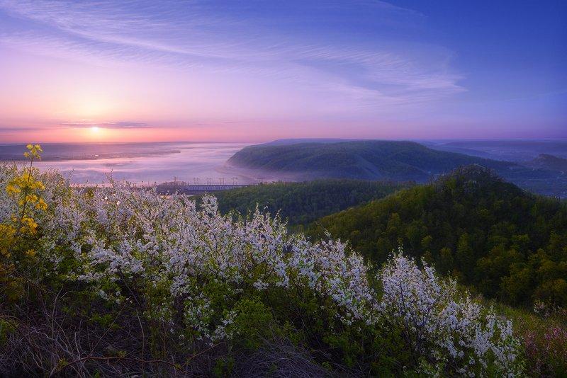 Цветущий май.photo preview