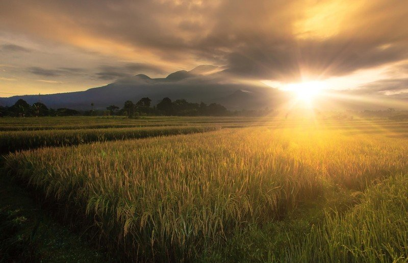 landscape morning sunshine between the mountain ranges north bengkuluphoto preview