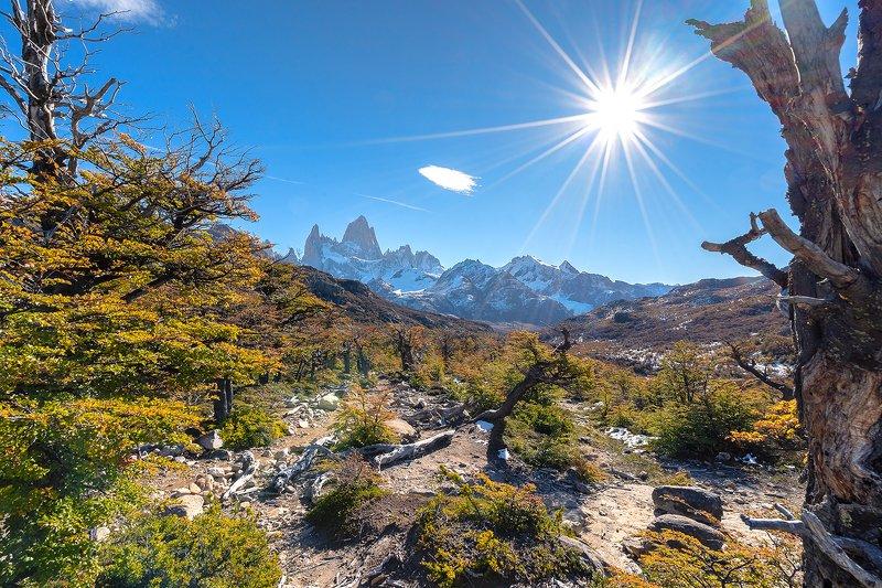 пейзаж, природа, горы, Патагония, Аргентина, Фиц Рой Осенняя Патагония, Аргентина, гора Фиц Рой, photo preview