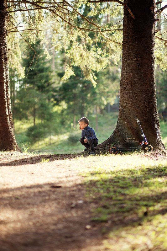 лето, лес, жара, мальчик, ребенок, солнце,природа,самокат, отдых Спрятался в тениphoto preview
