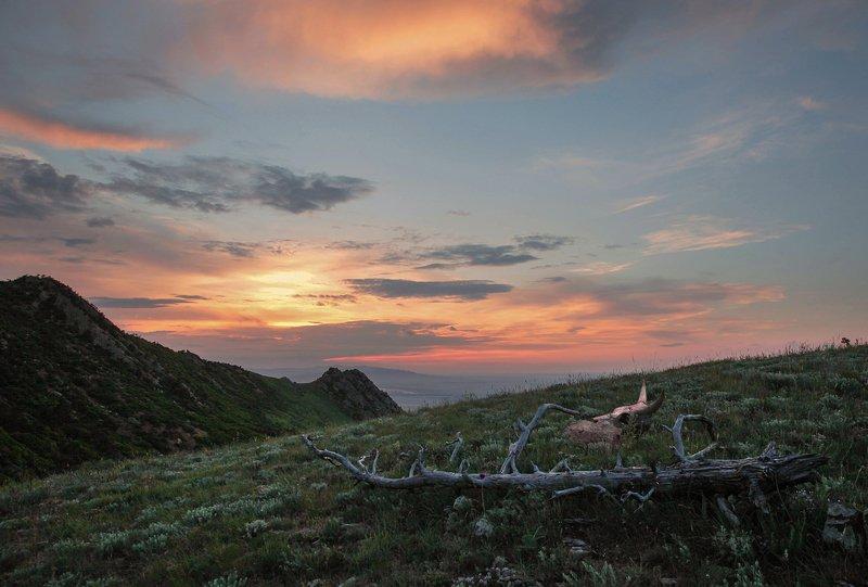 горы,весна,пейзаж,дагестан Горные мотивы.. фото превью