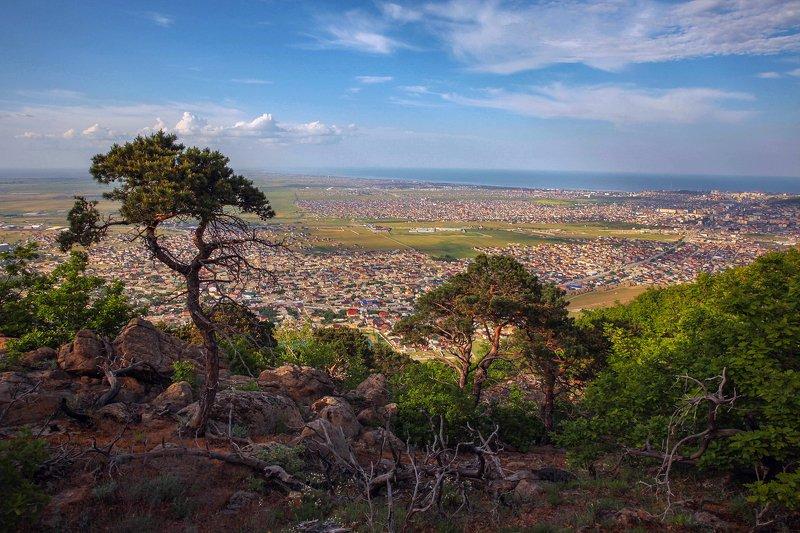 горы,весна,пейзаж.город,махачкала,дагестан Вид на Махачкалу с перевала.. фото превью