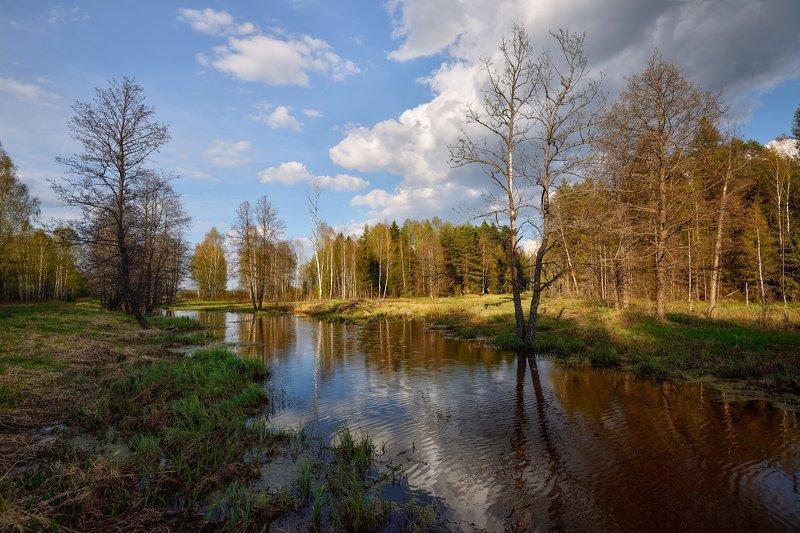 весна,река,лес,небо,облака весенний пейзажphoto preview
