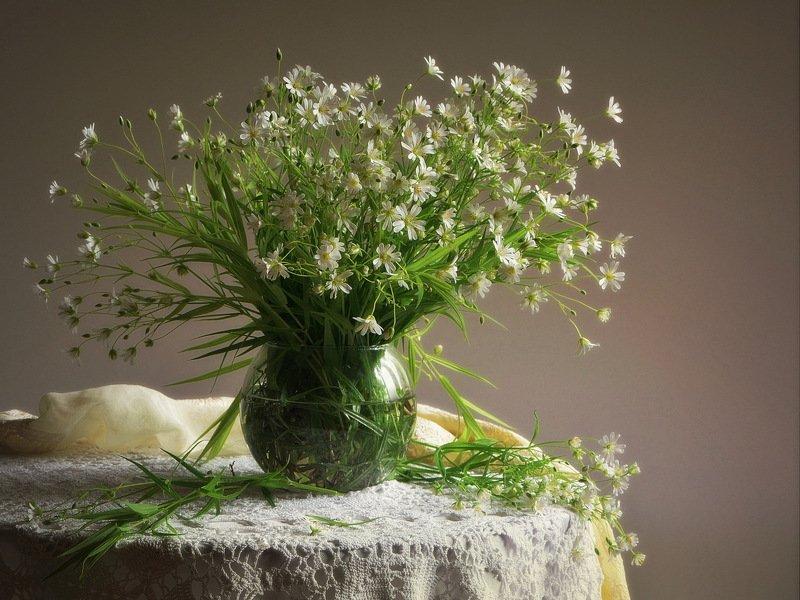 сергей алексеев, натюрморт Беленькие цветочкиphoto preview