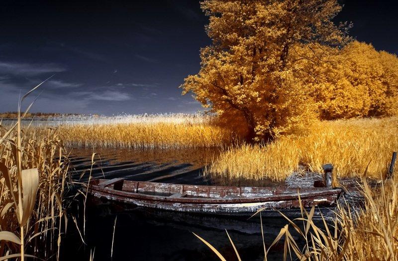 infrared,ик-фото,инфракрасное фото, инфракрасная фотография, пейзаж, лето В начале теплого дня.photo preview