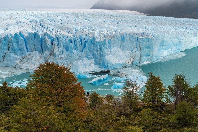 Патагония, Лос-Гласьярес, Перито Морено,ледник, пейзаж Ледник Перито Морено в парке Лос-Гласьярес, Патагония, Аргентинаphoto preview
