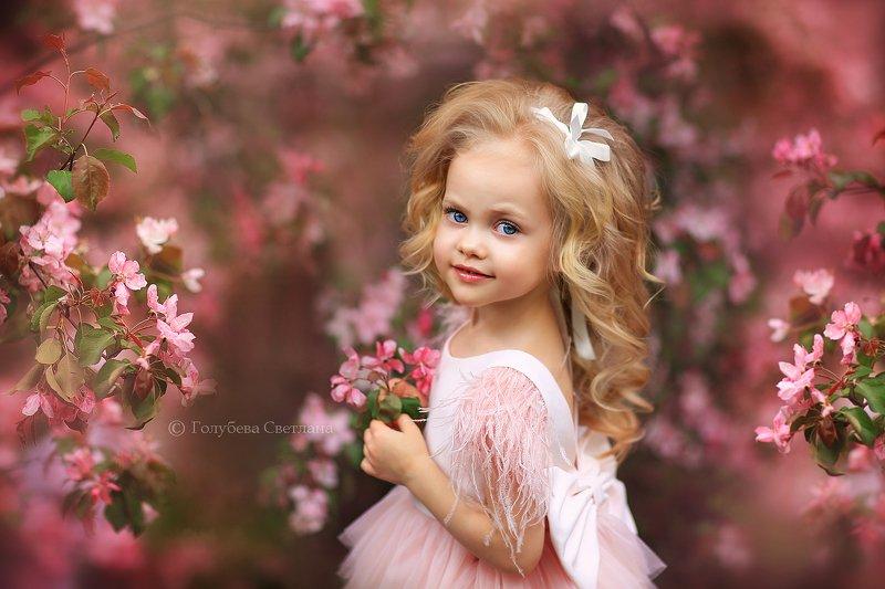 Весна в розовом садуphoto preview
