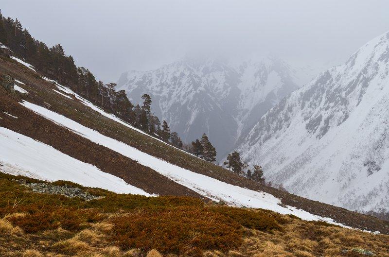 весна,горы, снег На границе весныphoto preview