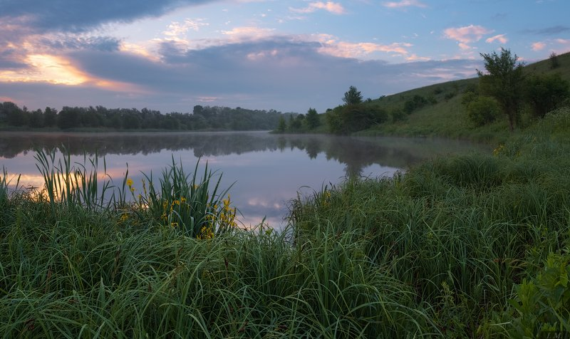 май, весна, озеро, туман, облака, рассвет, травы, цветы, ирисы, панорама, природа, пейзаж, springtime, may, irises, flowers, foggy, morning, pond, lake, grass, clouds, fog, misty, spring, sunrise, landscape, panorama, nature Май - время ирисов ...photo preview