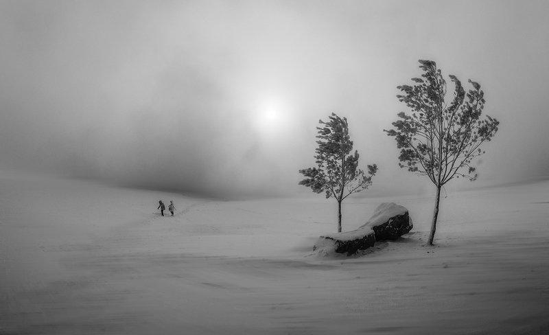Мороз. Ветер. Туман.photo preview