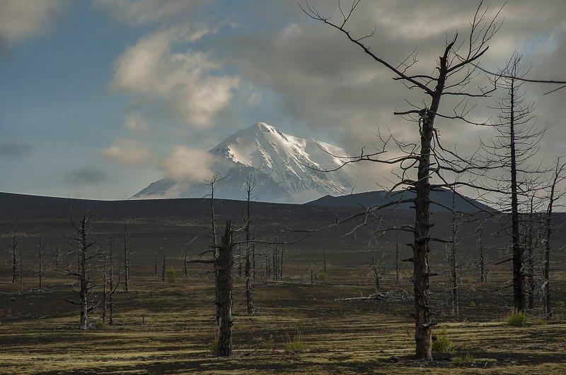 камчатка вулкан толбачик бтти Толбачикphoto preview