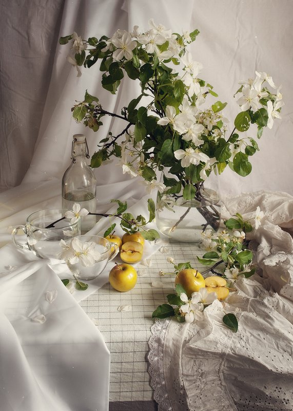 яблоня, весна, натюрморт, яблоки Яблонев цветphoto preview