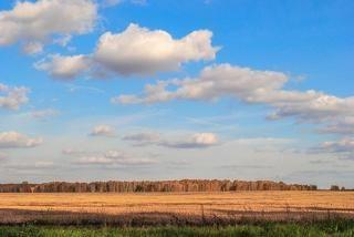 Осенний степной простор.