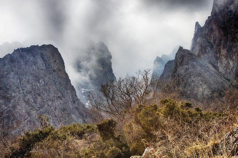 кыргызстан, горы Сказки туманаphoto preview