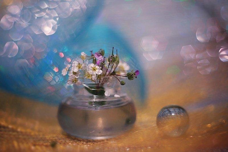 kwiatowy majphoto preview