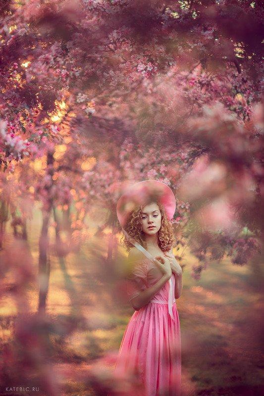 розовый, девушка, рассвет, солнце, детская фотосессия, детский фотограф, москва, цветение Розовая историяphoto preview