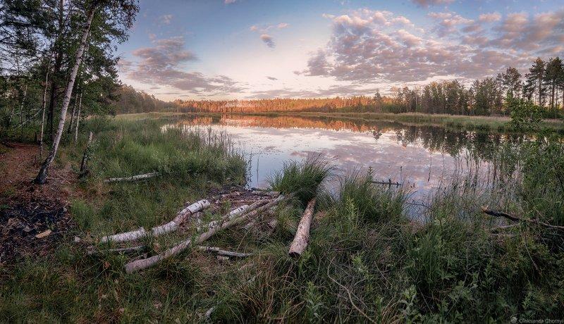 украина, коростышев, природа, лес, полесье, озеро, круглое, тишина, уединение, счастье, жизнь, воздух, чистый, вдохновение,     облака, отражение, трава, березки, деревья, просторы, фотограф, чорный, Пусть говорит тишинаphoto preview