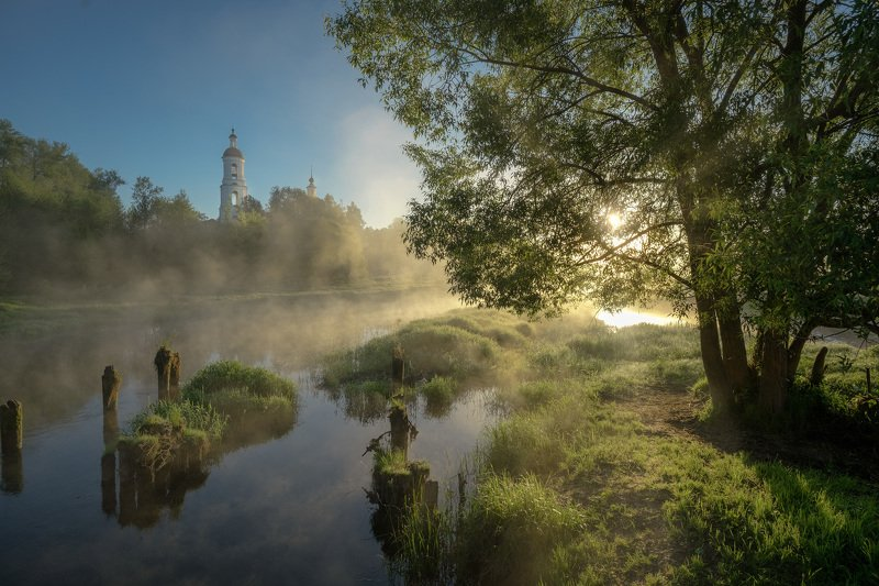 филипповское, шерна, река, церковь, утро, рассвет, туман, дерево, путешествие, пейзаж, зелень Зеленеющий майphoto preview